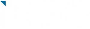 Logo Ineo Blanc